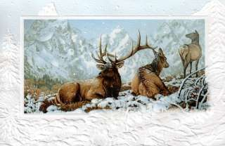 16 Boxed Embossed Christmas Cards Elk Wapiti