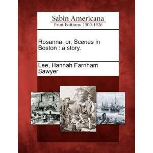 in Boston a story. (9781275692558) Hannah Farnham Sawyer Lee Books