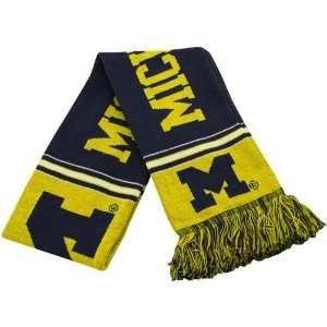 Michigan Wolverines Maize Navy Blue Striped Team Scarf