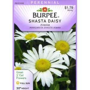 Burpee 46187 Daisy Shasta, Alaska Seed Packet Patio, Lawn