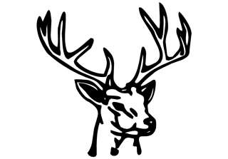 Deer Buck Head Decal Sticker Truck Home Window Graphic