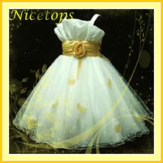 Gold Wedding Festivity Party Flower Girls Dress SZ 2 10
