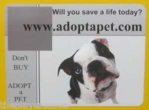Dont buy Adopt a Pet Car Magnets Help rescue dogs and cats