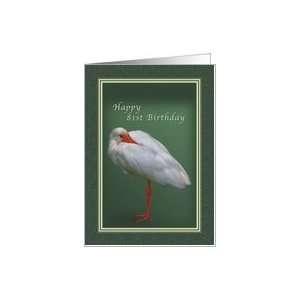 Birthday 81st, White Ibis Bird Card Toys & Games