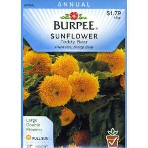 Burpee 47936 Sunflower Teddy Bear Seed Packet Patio, Lawn