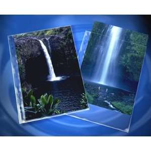 Clear File 8 X12 Print Page (25 pack) Arts, Crafts