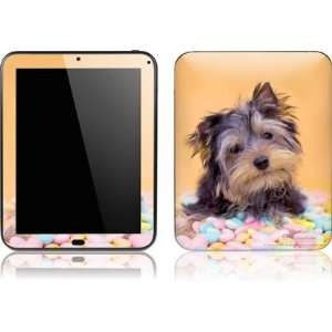 Yorkie Puppy with Candy skin for HP TouchPad: Computers