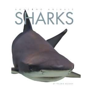 Amazing Animals Sharks (Amazing Animals (Creative
