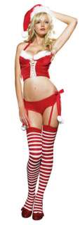 Miss Santa Costume   Holiday Costumes