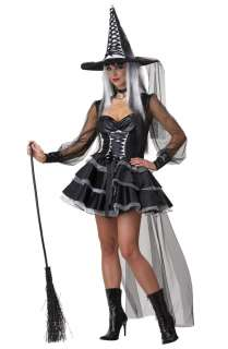 Mystic Witch Adult Costume for Halloween   Pure Costumes