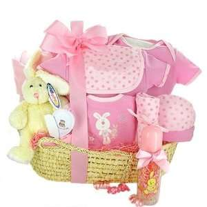 Newborn Baby Bassinet Baby Girl Gift Basket Home & Kitchen