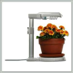 Power Grow Lamp Indoor Sunlight for Bonsai Trees