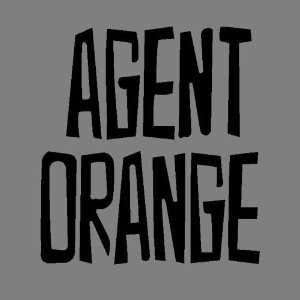 ORANGE (BLACK) DECAL STICKER WINDOW CAR TRUCK FORD CHEVY JEEP DODGE