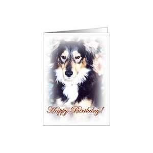To My Best Friend    Happy Birthday Dog Card Health