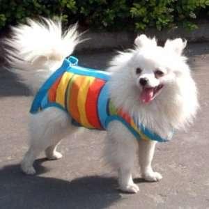 Pet Dog Cat Coat Apparel Leash Harness Carrier Bag L