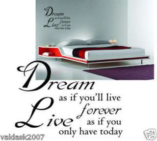 VINYL Wall QUOTE , ART STICKER DECAL KIT14